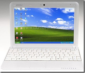 Can I run Microsoft Office on a Netbook?